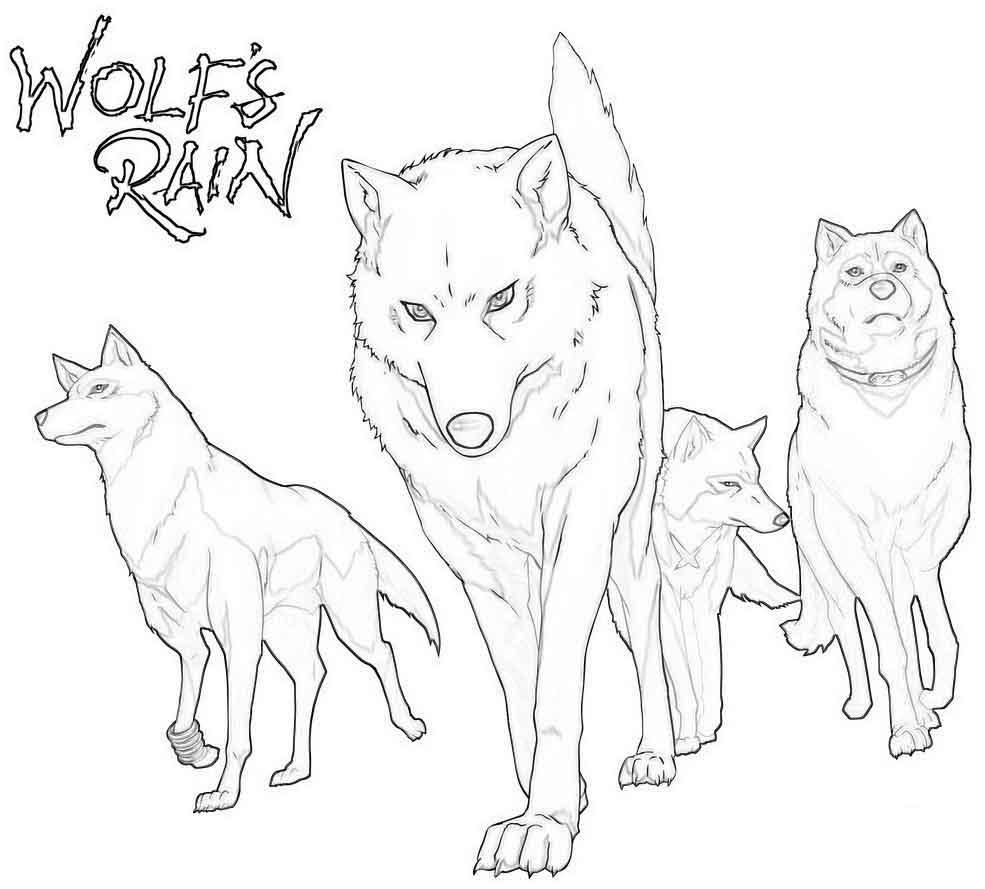 раскраски картинки волков