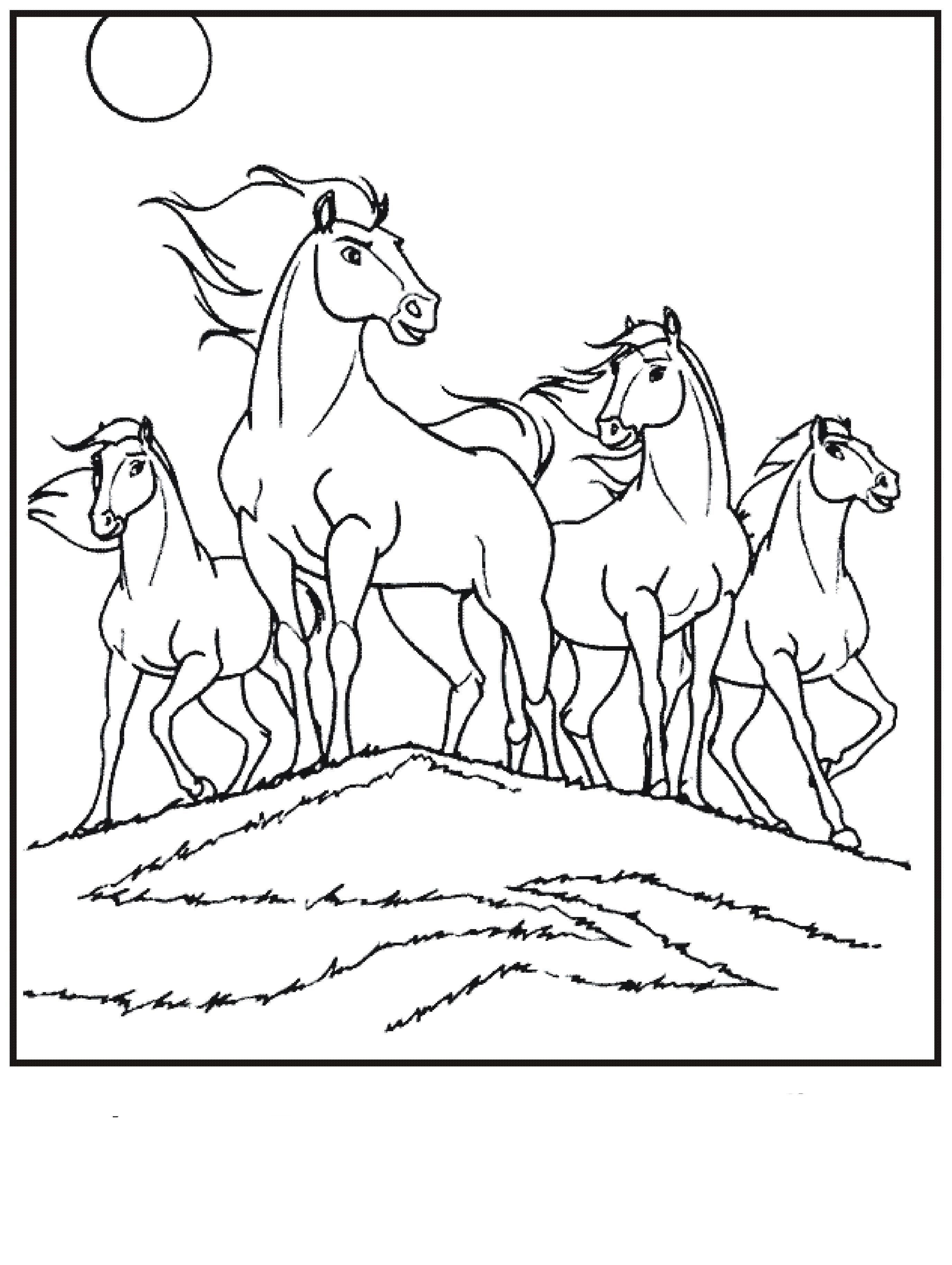 Раскраски лошади табун Раскраски для мальчиков