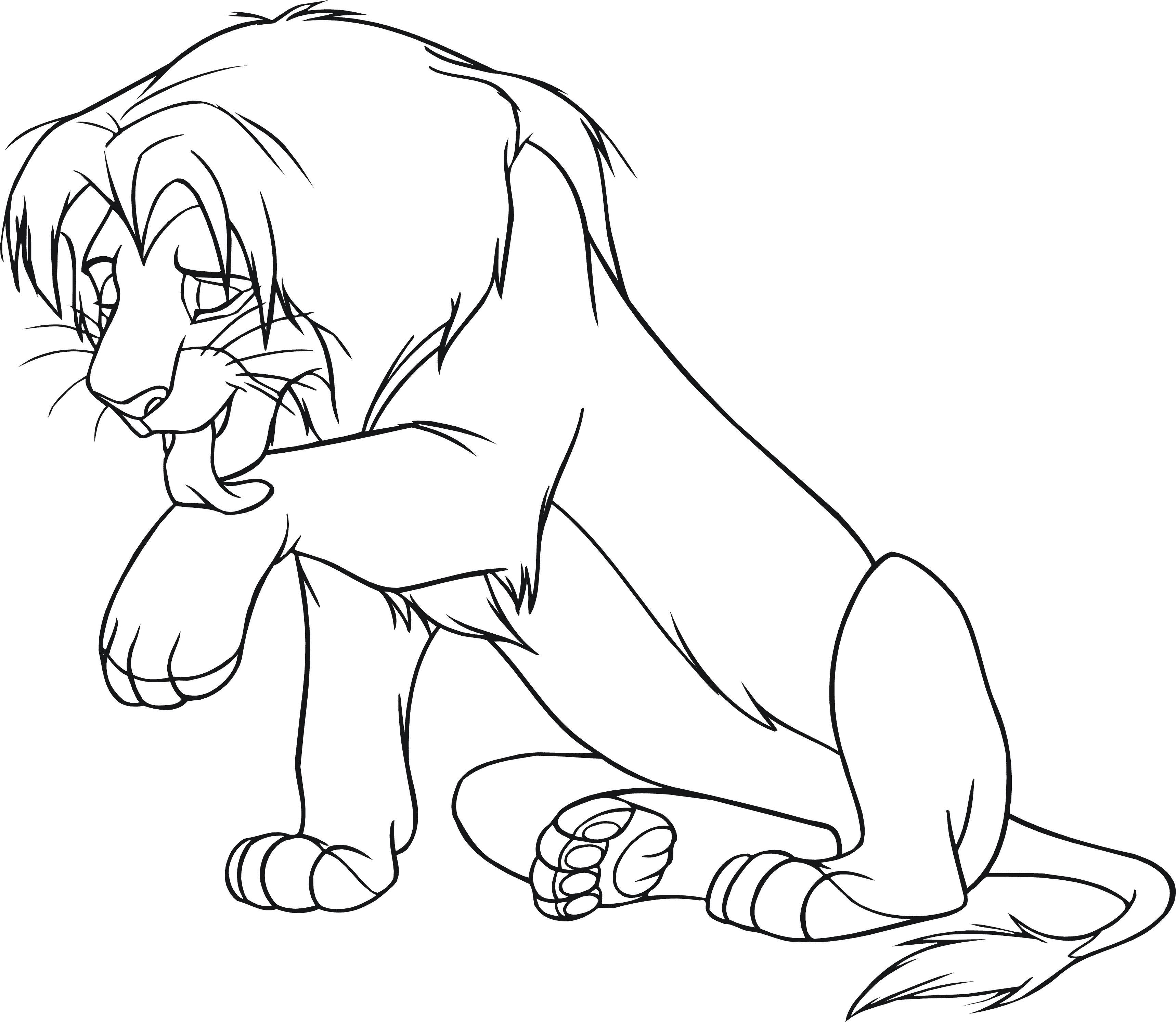 Лев после охоты Раскраски для мальчиков