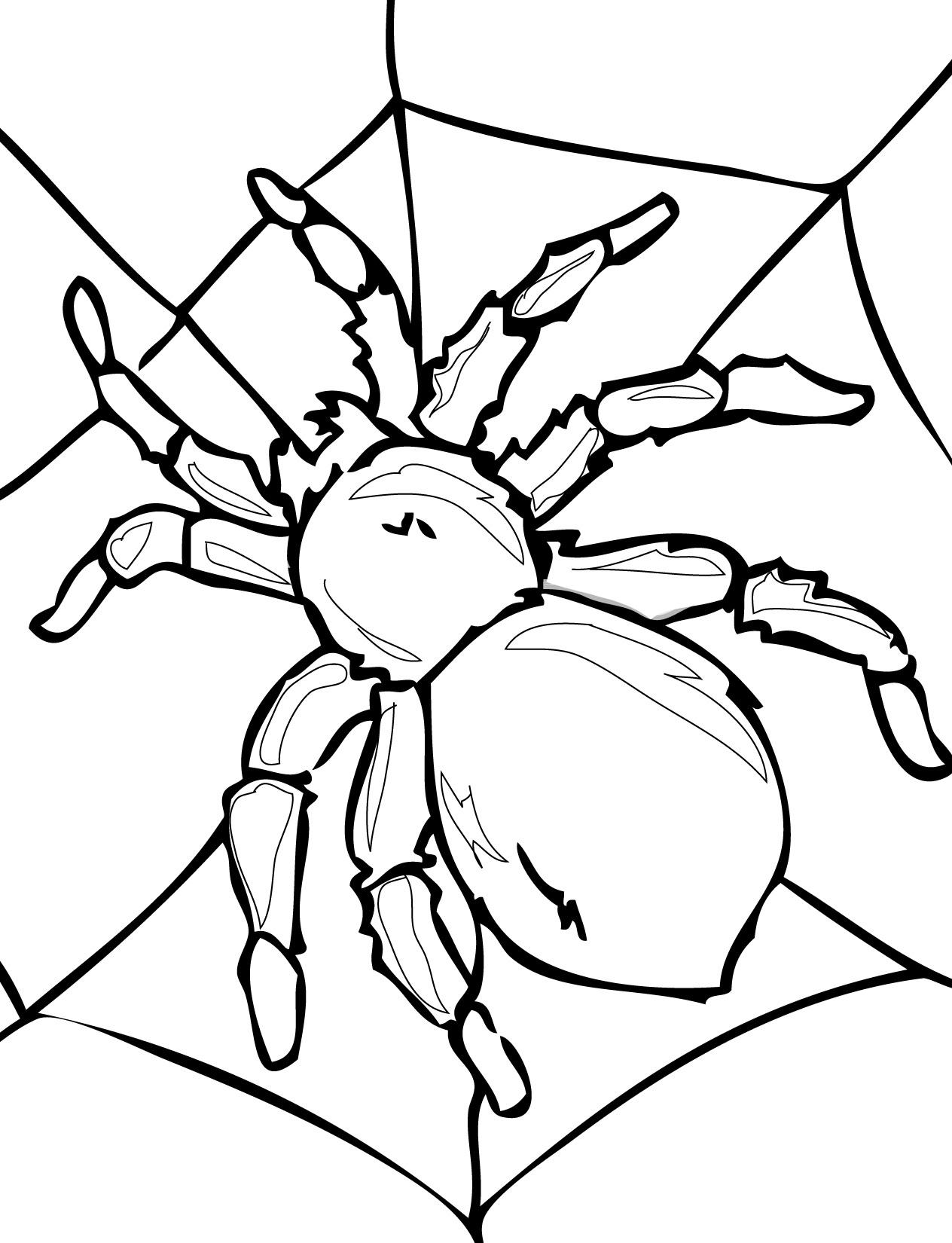 Паук на паутине Распечатать раскраски для мальчиков