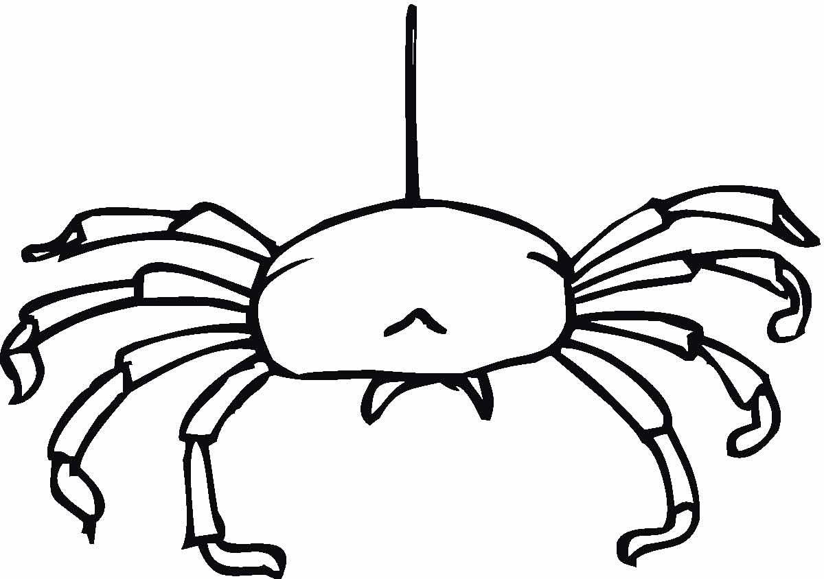 Паук спускается с паутины Распечатать раскраски для мальчиков