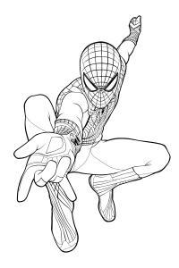 Раскраска человек паук Раскрашивать раскраски для мальчиков
