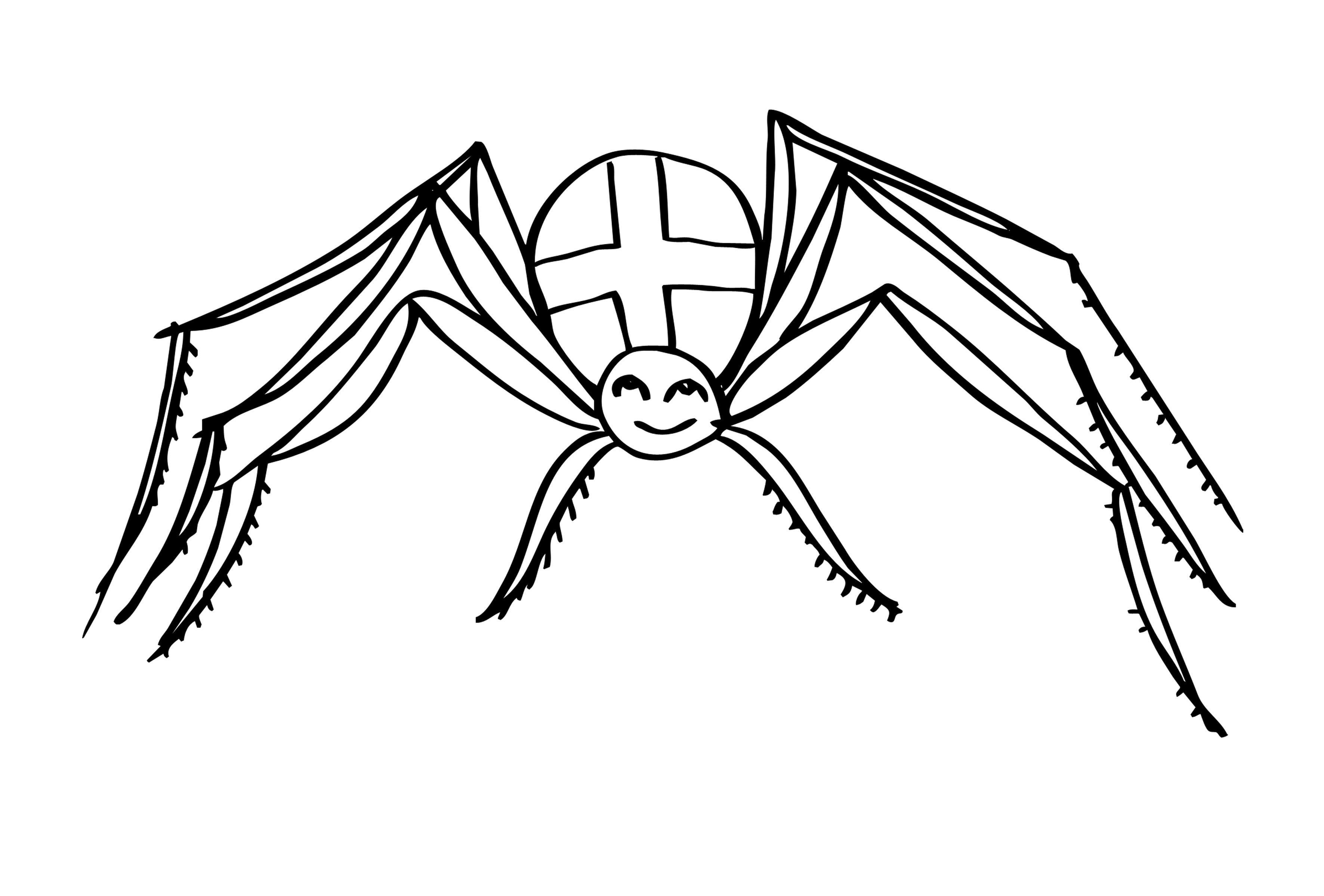 Паук-крестовик Распечатать раскраски для мальчиков