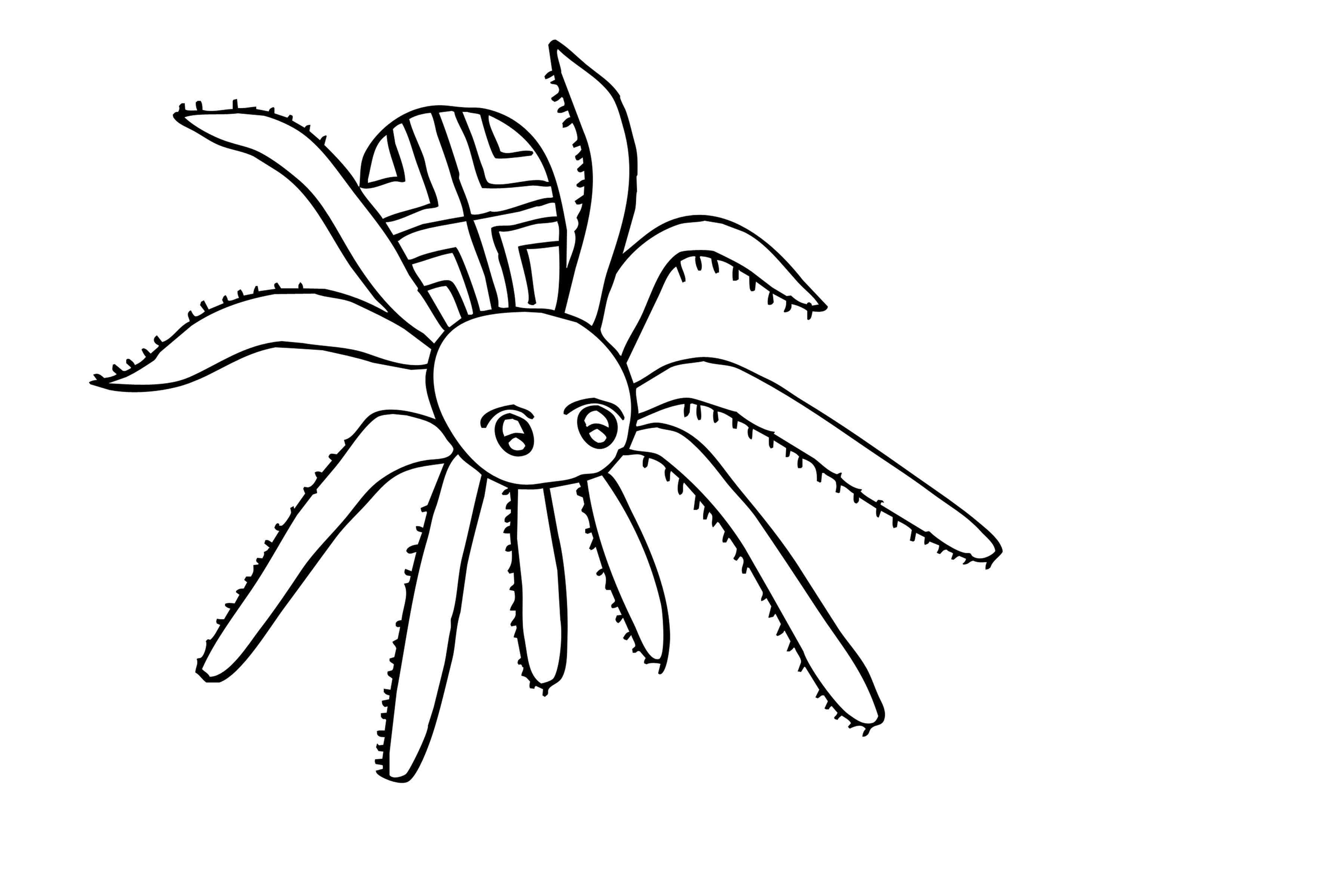 Маленький пауук Распечатать раскраски для мальчиков
