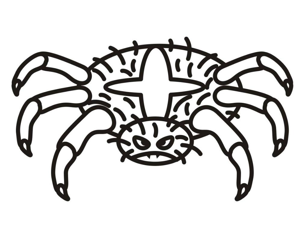 Сердитый паук Распечатать раскраски для мальчиков