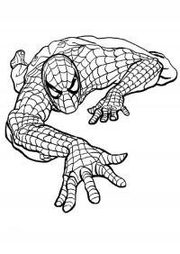 Человек паук куда то ползет Раскраски для мальчиков