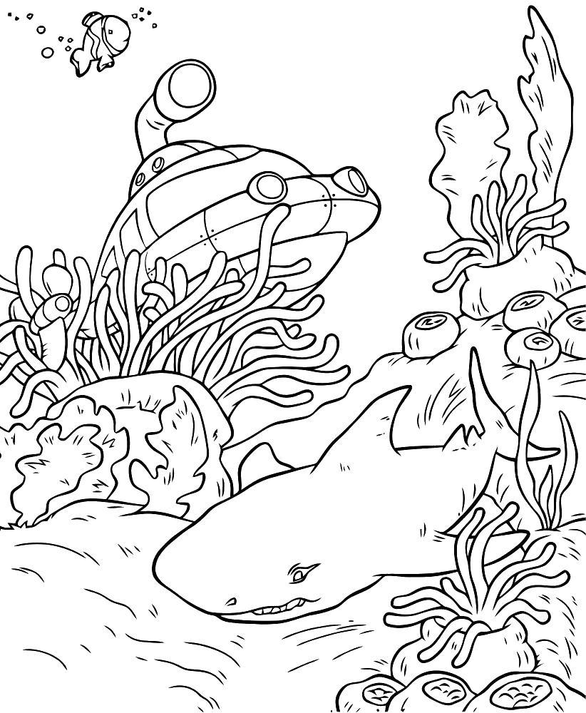 Исследование океана Скачать раскраски для мальчиков