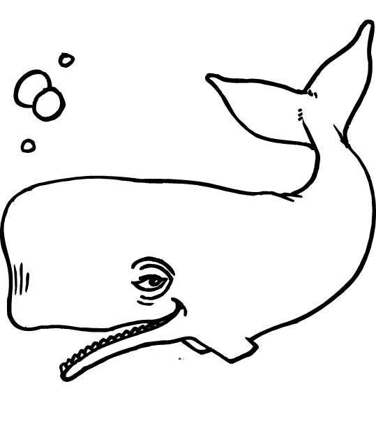 Морские обитатели Распечатать раскраски для мальчиков