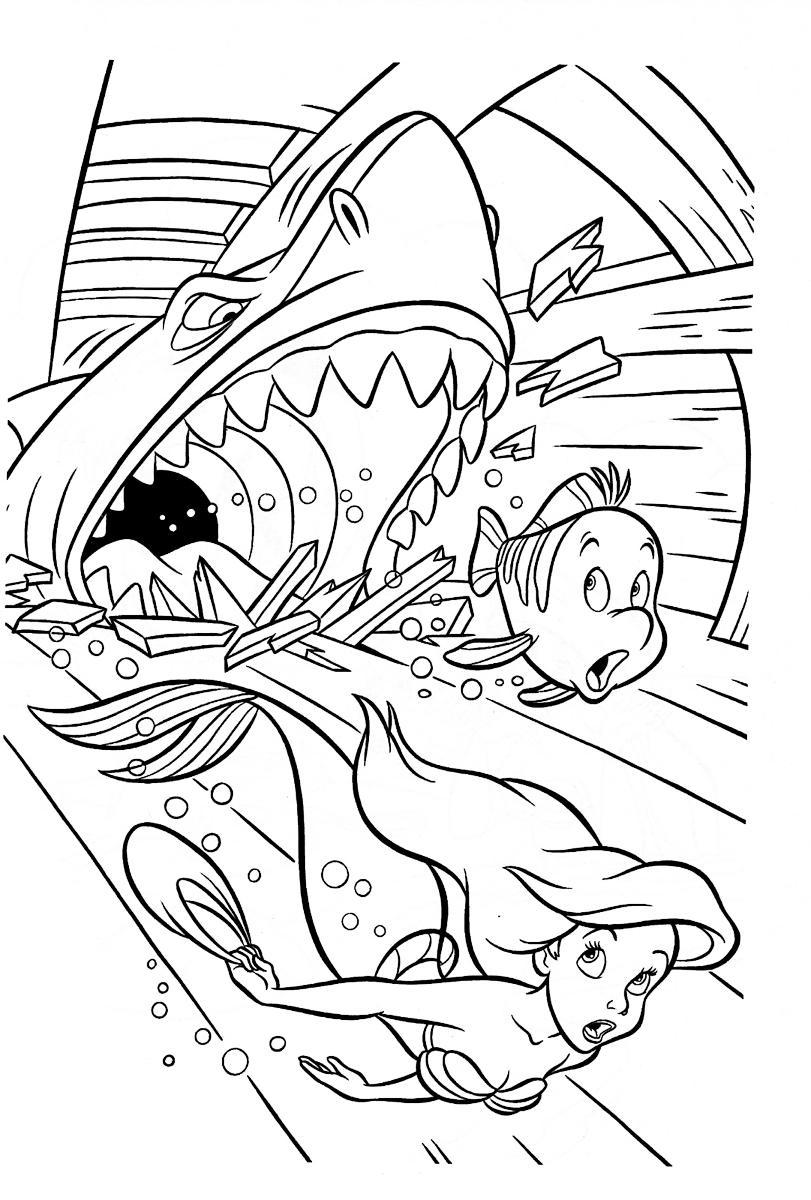Акула прогрызла зубами лодку Раскраски для мальчиков бесплатно