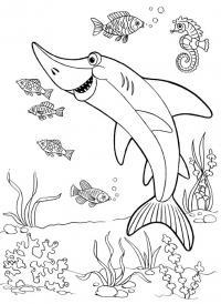 Акула рыбки и коньки Раскраски для мальчиков бесплатно