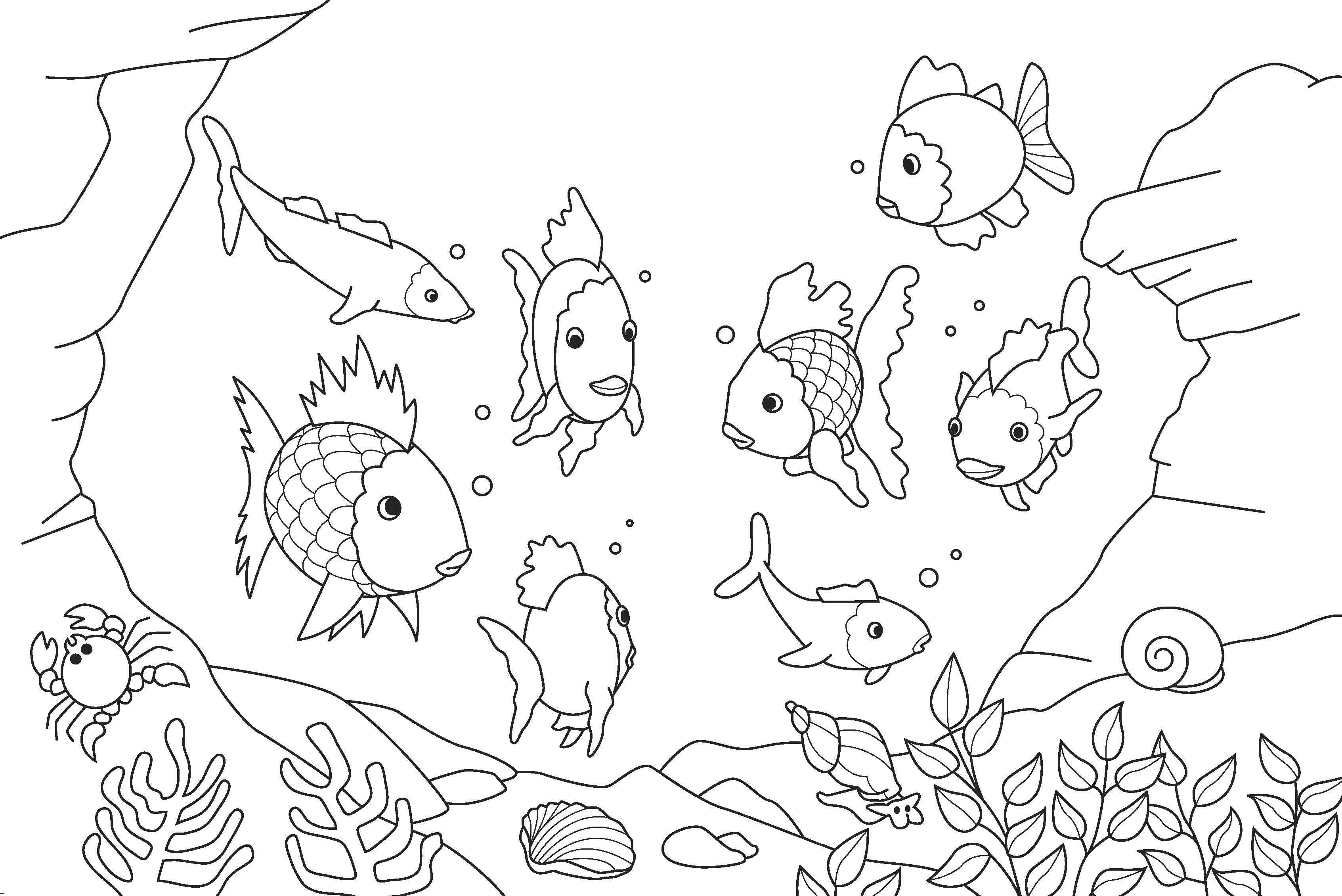 Морское дно Скачать раскраски для мальчиков
