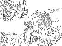 Морская черепаха и рыбки на морском дне Раскраски для мальчиков