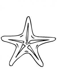 Звезда Распечатать раскраски для мальчиков