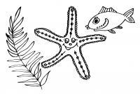 Водоросль, морская звезда и рыбка Распечатать раскраски для мальчиков