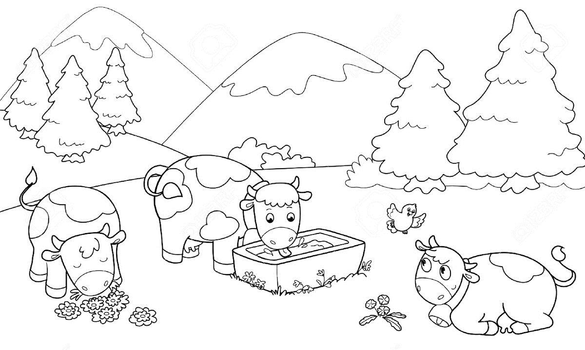 Коровы в горах Раскраски для детей мальчиков