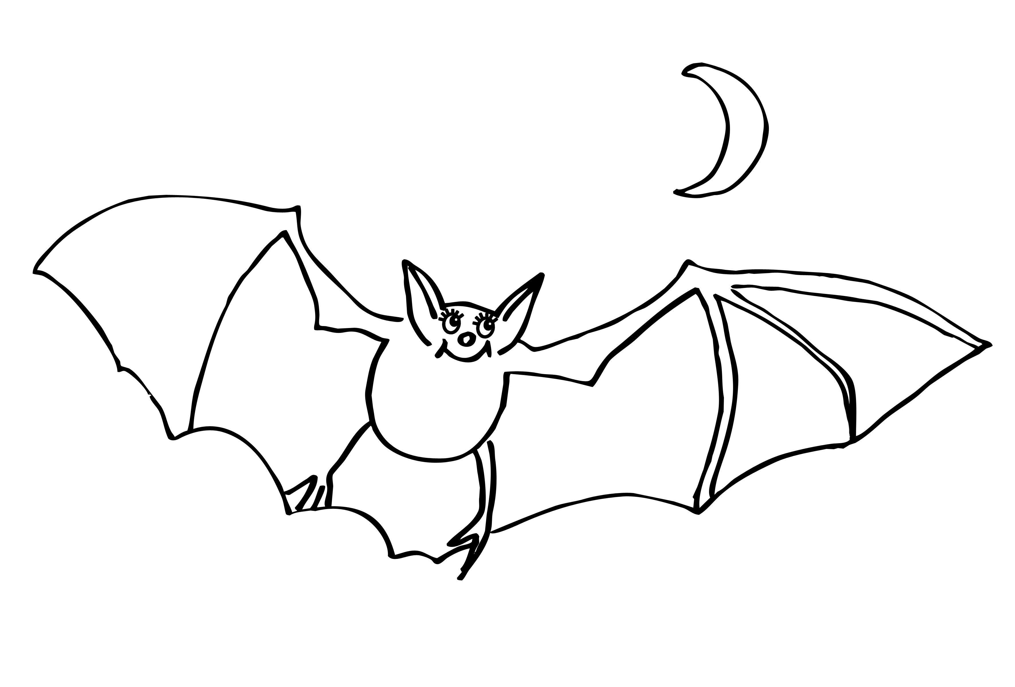 Летучая мышь под луной Распечатать раскраски для мальчиков