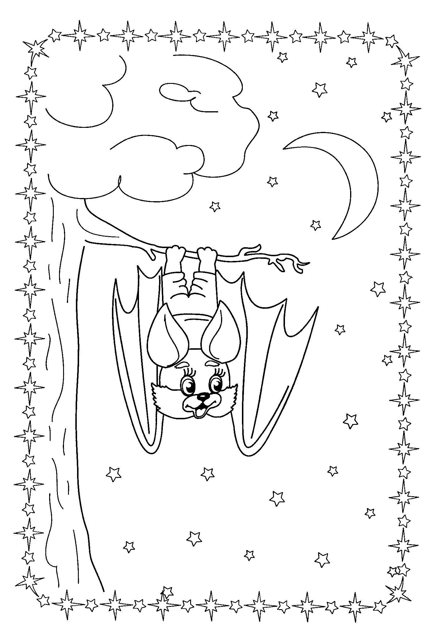 Красивая летучая мышка на ветке на фоне ночного неба Раскраски для мальчиков
