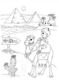 Пирамиды египта, мальчик на верблюде, цветущий кактус Раскраски для мальчиков бесплатно