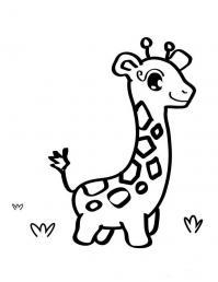 Маленький жираф Раскраски для мальчиков