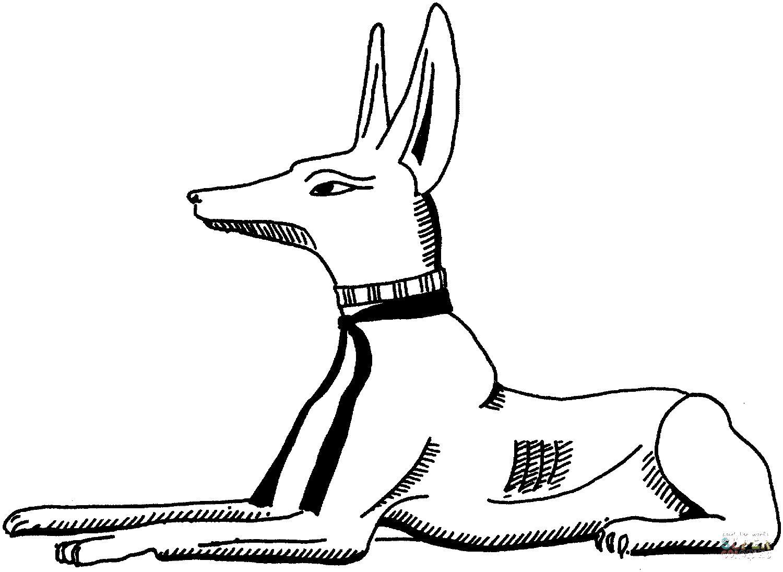 Египетская собака Раскраски для мальчиков бесплатно