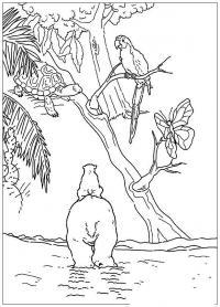 Медвежонок верхом на медведе Скачать раскраски для мальчиков
