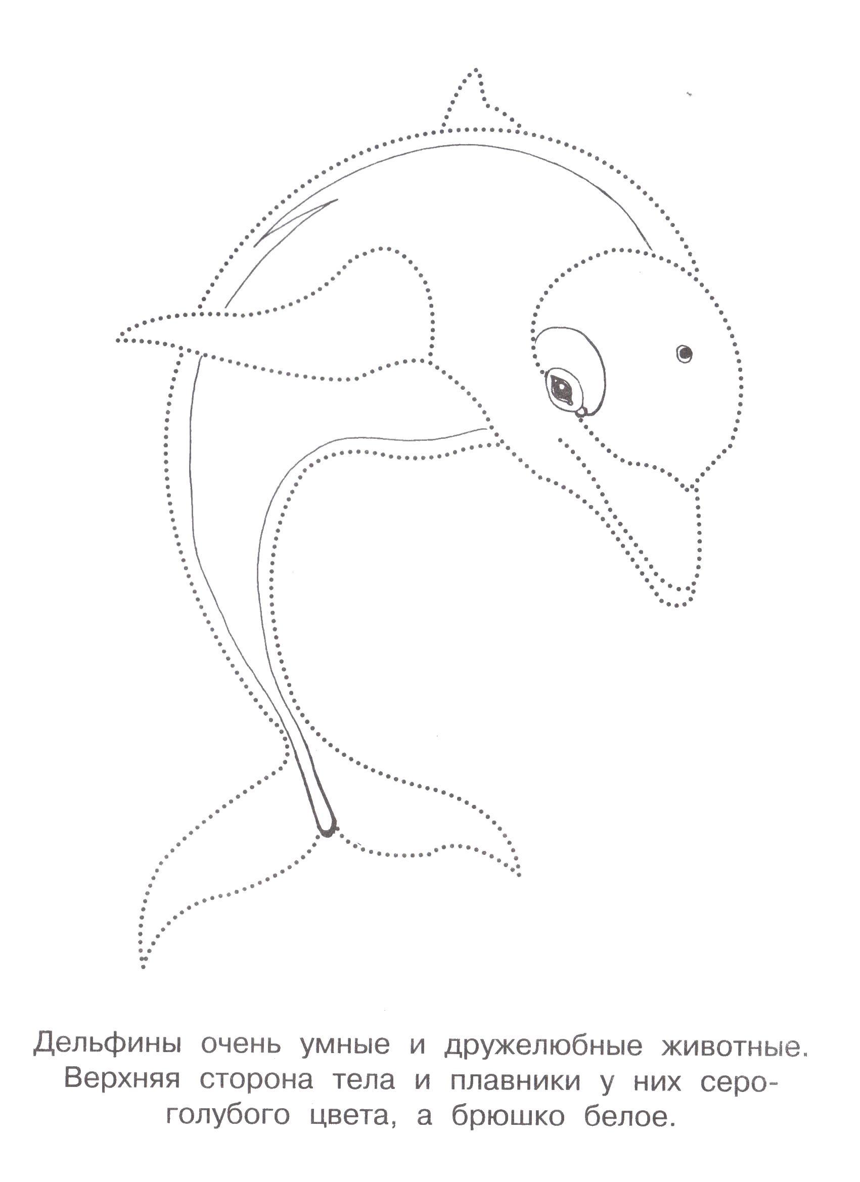 Дельфин Распечатать раскраски для мальчиков