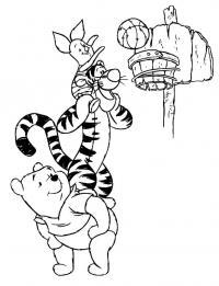 Животные баскетболисты Раскраски для мальчиков