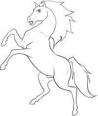 Раскраски лошади Раскраски для мальчиков