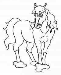 Конь с пышной гривой Раскрашивать раскраски для мальчиков