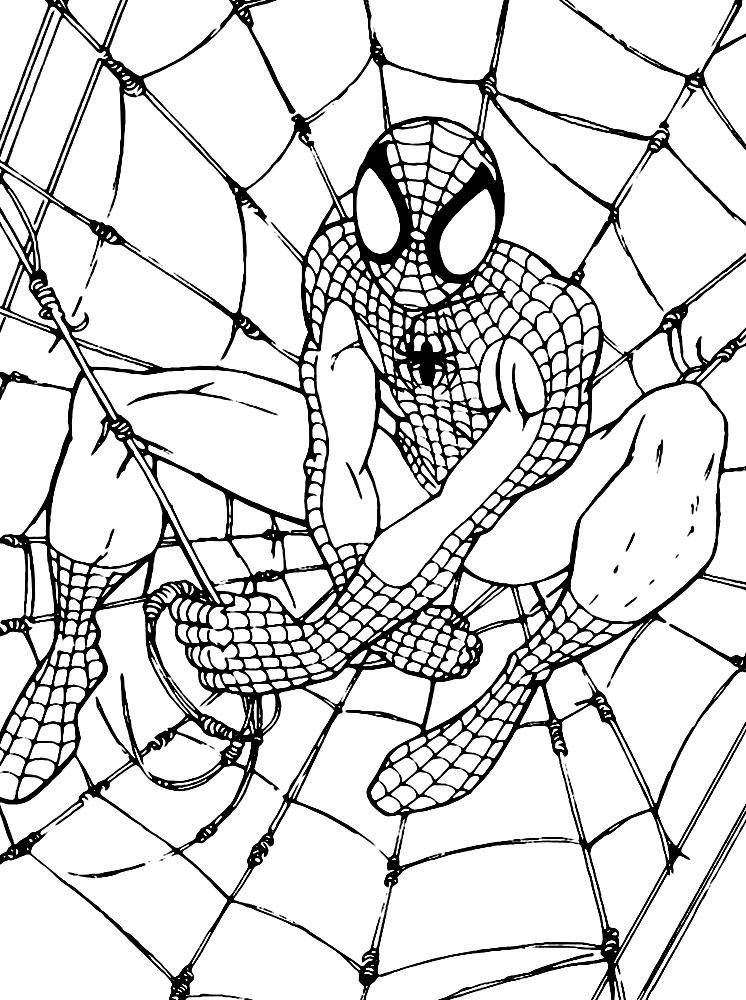 Человек-паук Раскрашивать раскраски для мальчиков