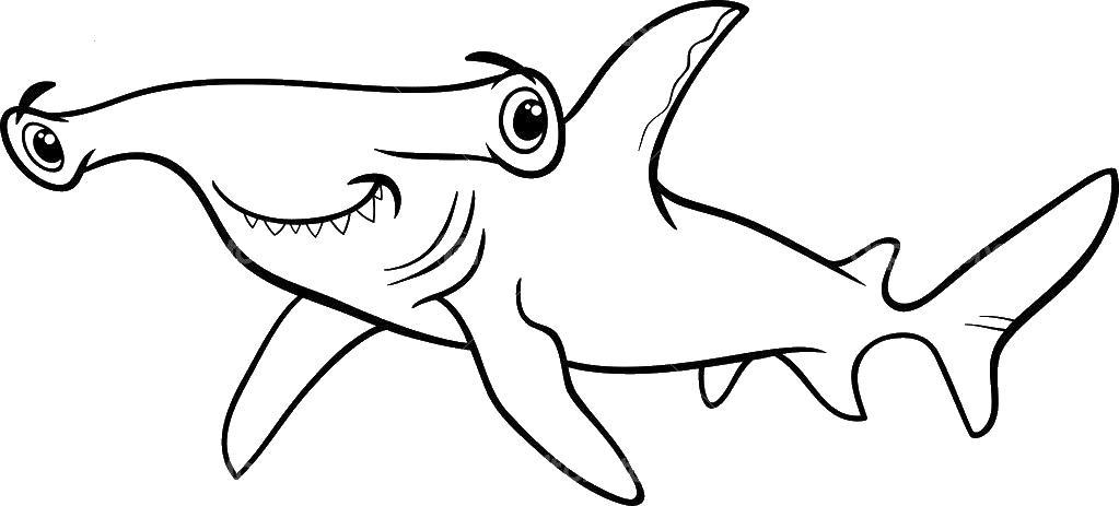 Акула молот Раскраски для мальчиков бесплатно