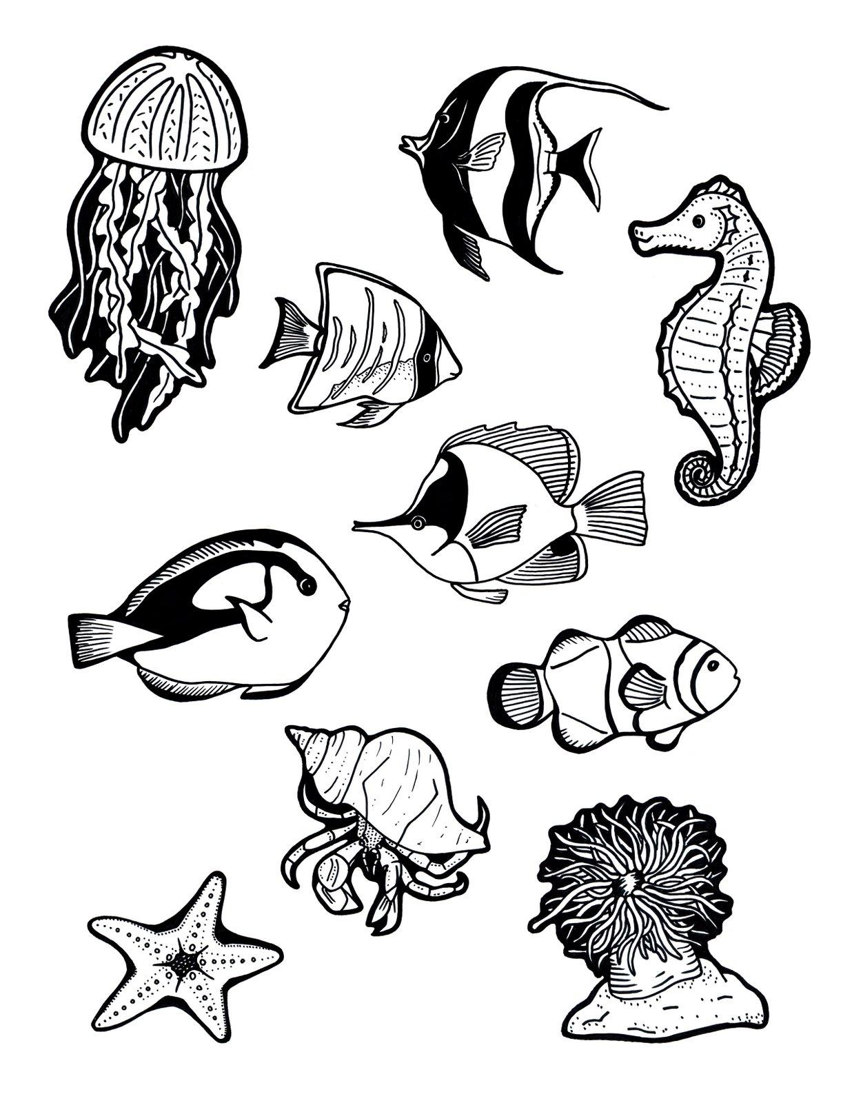 Рыбки, морские коньки и медузы Распечатать раскраски для ...