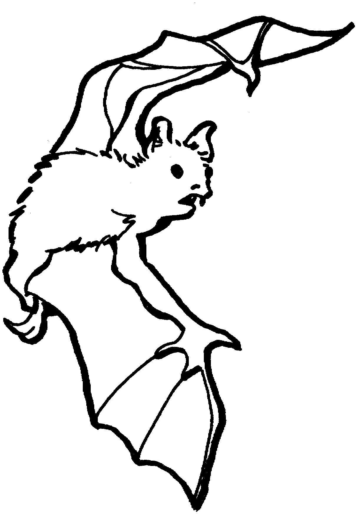 ольга летучие мыши картинки для раскраски кабриолет базе гелика
