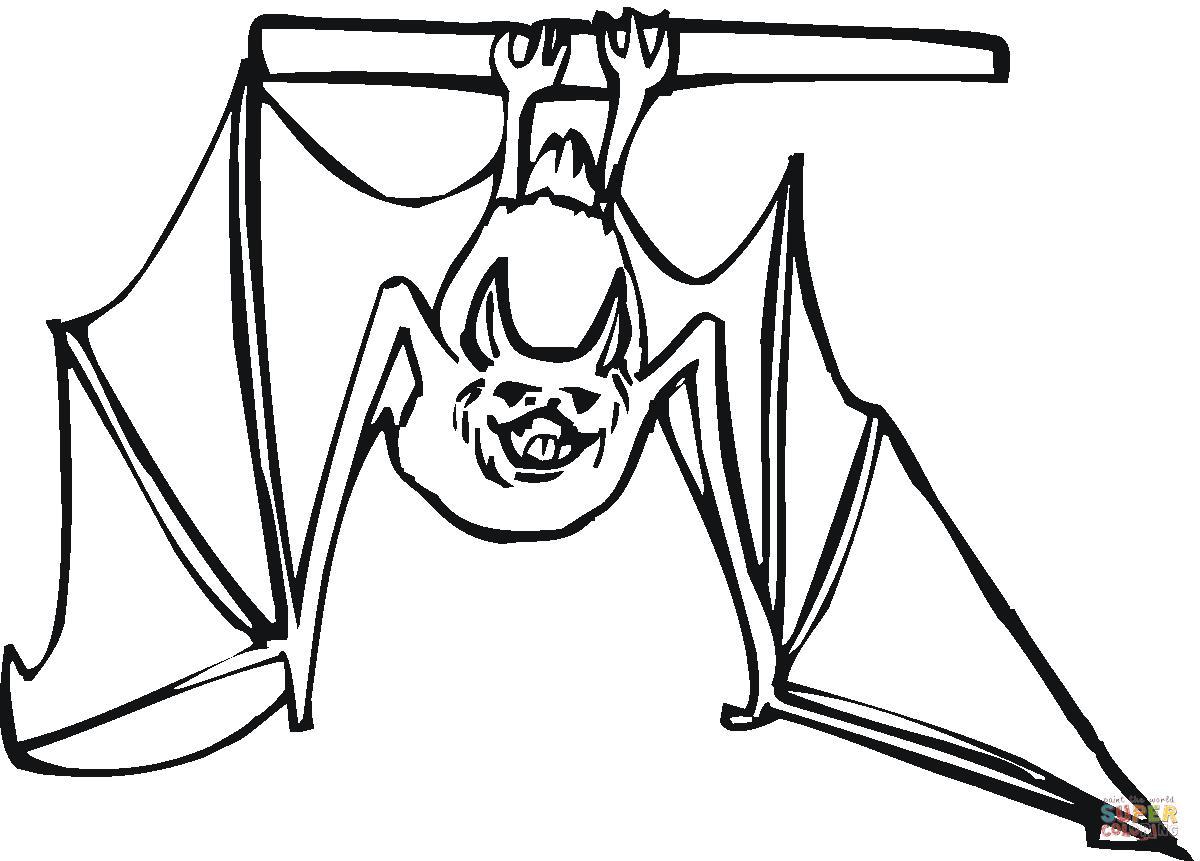 паттайе летучие мыши картинки для раскраски руках веточки