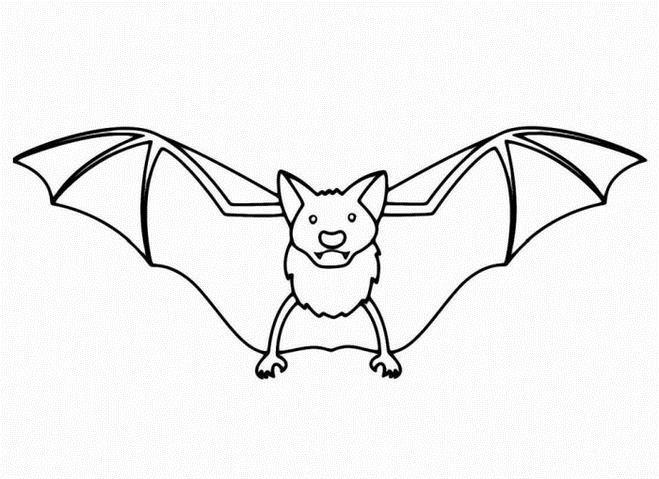 Летучая мышь Раскраски для мальчиков