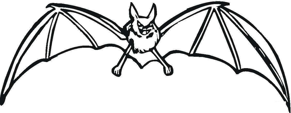 Зловещая летучая мышь Раскраски для мальчиков